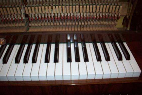 Маленькое пианино Токката