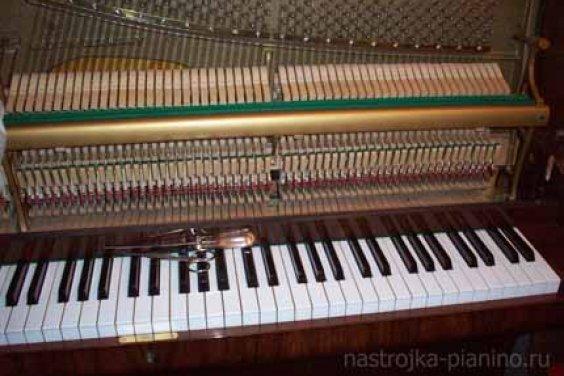 Что мы должны знать о настройке пианино