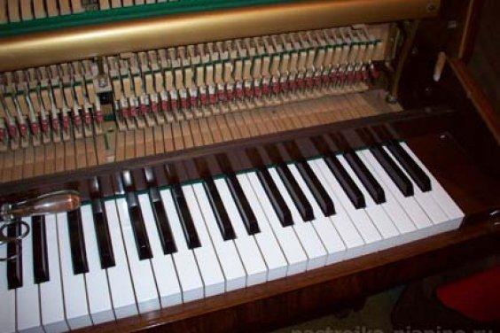 Любой музыкальный инструмент чувствует руку настоящего мастера