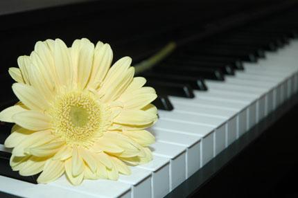 настройщик пианино и семья