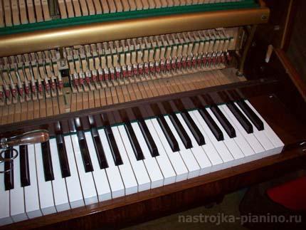 настройщик пианино